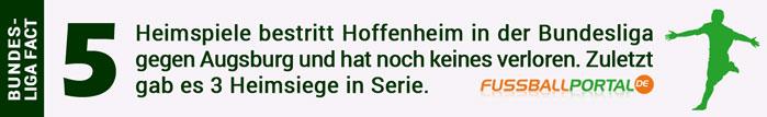facts hoffenheim gegen augsburg