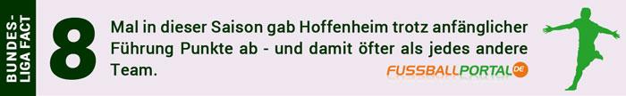 Hoffenheim - Darmstadt Fact