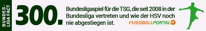 Fact HSV - Hoffenheim