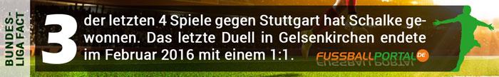 Fact Schalke - Stuttgart