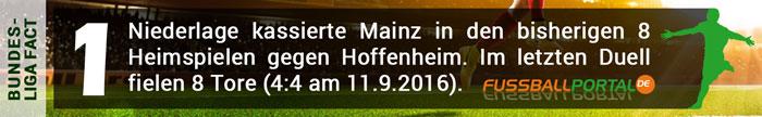 Fact Mainz - Hoffenheim