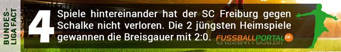 Facts Freiburg Schalke