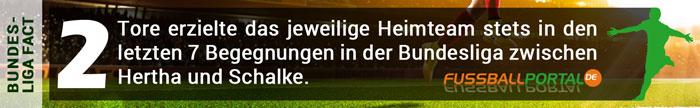 Fact Hertha BSC gegen Schalke