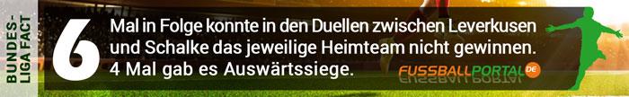 Fact Leverkusen - Schalke