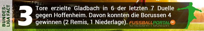 Fact Gladbach - Hoffenheim