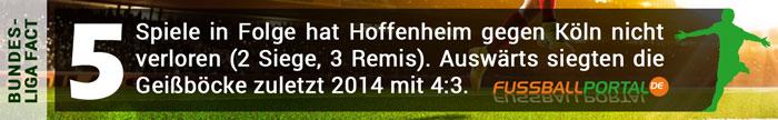 Fact Hoffenheim - Köln